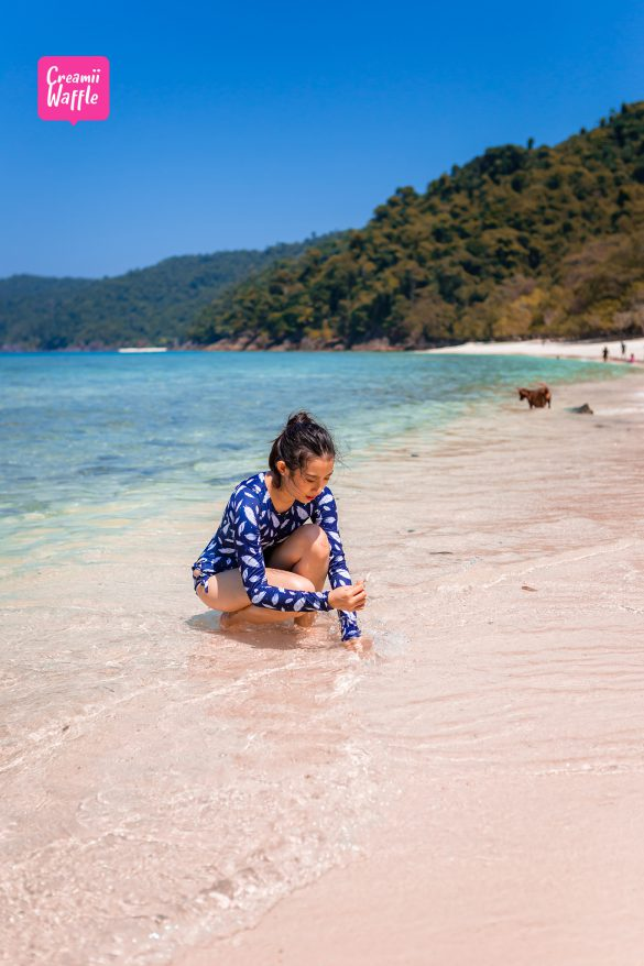 bruer island myanmar น้ำใส