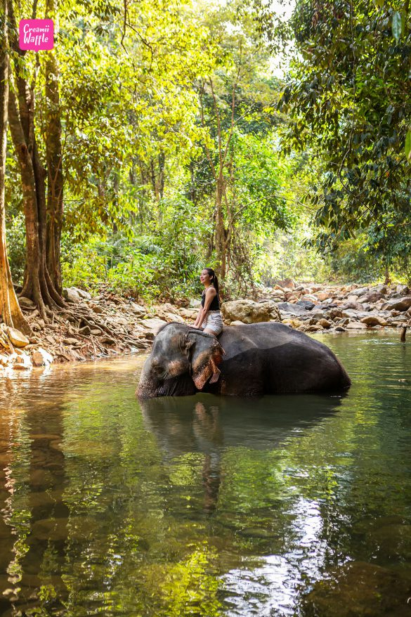 บ้านควาญช้าง - รีวิวสถานที่ท่องเที่ยว เกาะช้าง