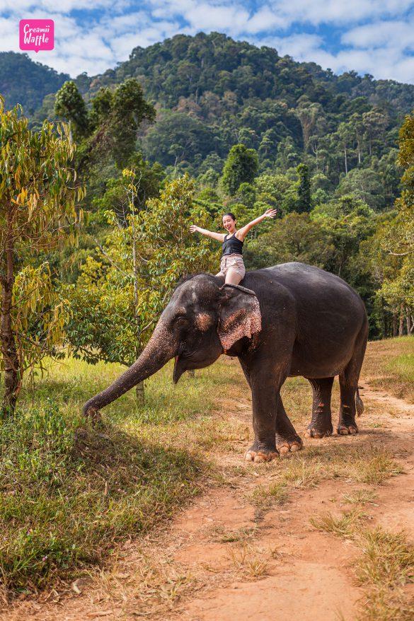 เที่ยววิถีไทย บ้านควาญช้าง เกาะช้าง