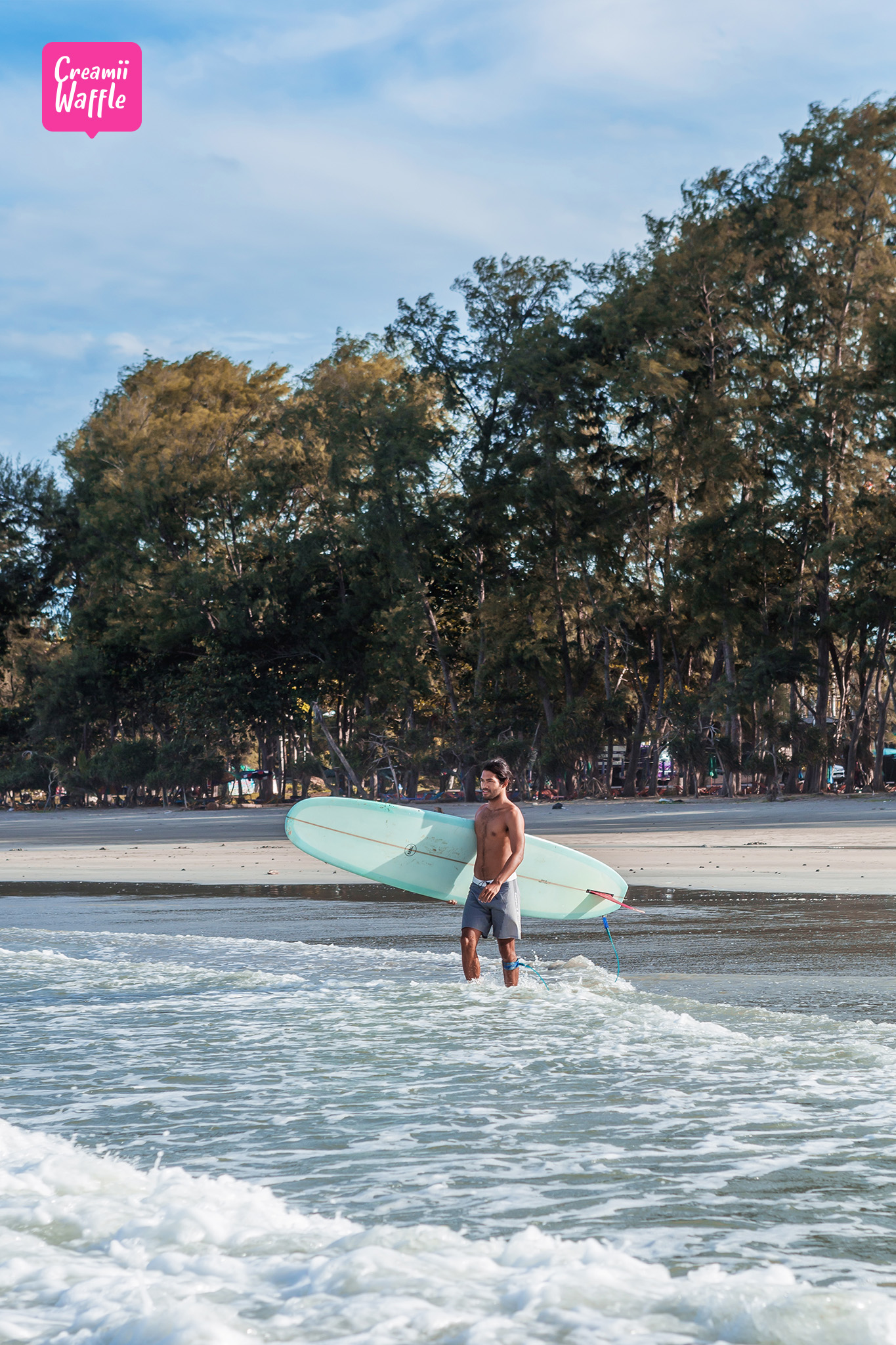 Surfer's Holiday
