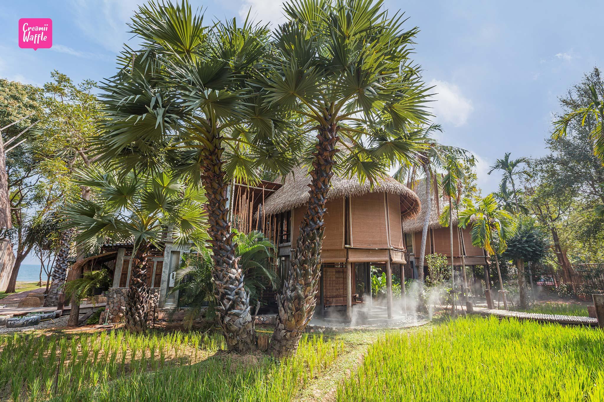 Tropical village la a natu