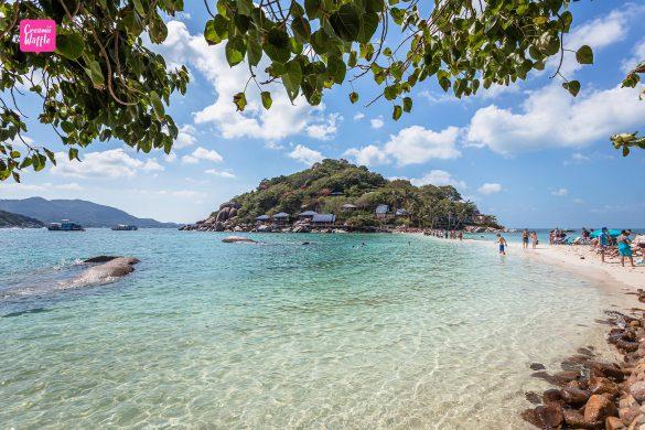 KOH TAO เกาะนางยวน คู่มือท่องเที่ยวเกาะเต่า