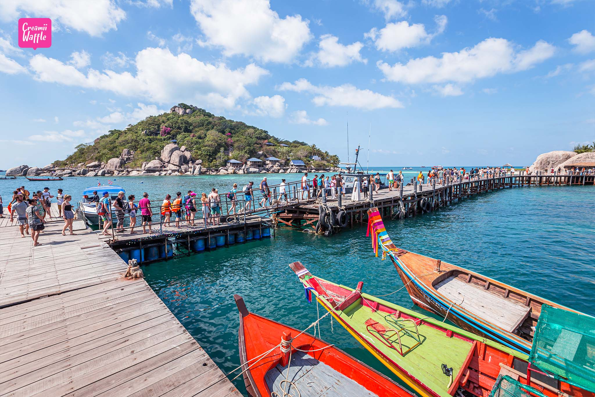 KOH TAO เที่ยวเกาะนางยวน คู่มือท่องเที่ยวเกาะเต่า