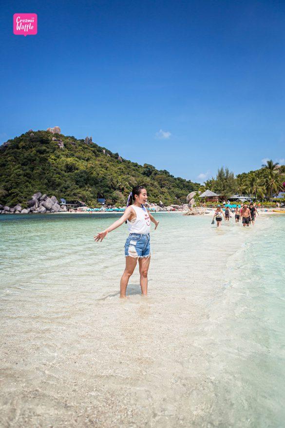 KOH TAO เที่ยวเกาะนางยวน คู่มือท่องเที่ยวเกาะเต่า Creamii