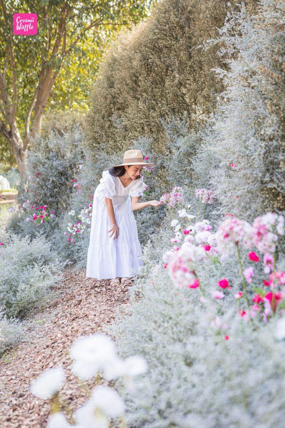 นิทรรศการ RakDok Floral Destination มหัศจรรย์แดนมาลี