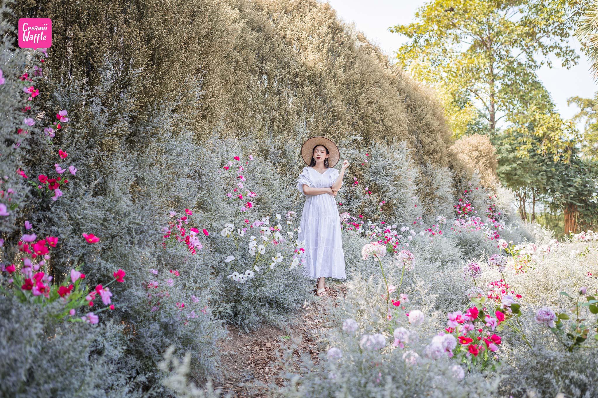 เที่ยว รักดอก RakDok มหัศจรรย์แดนมาลี ราชบุรี งานดอกไม้