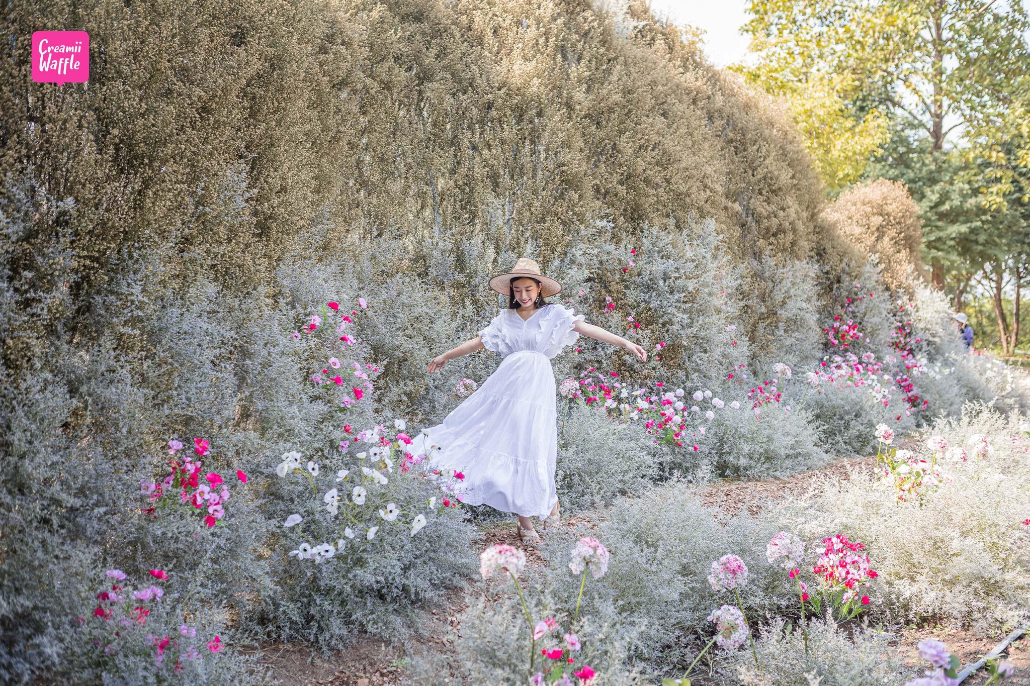 เที่ยว รักดอก RakDok มหัศจรรย์แดนมาลี ราชบุรี