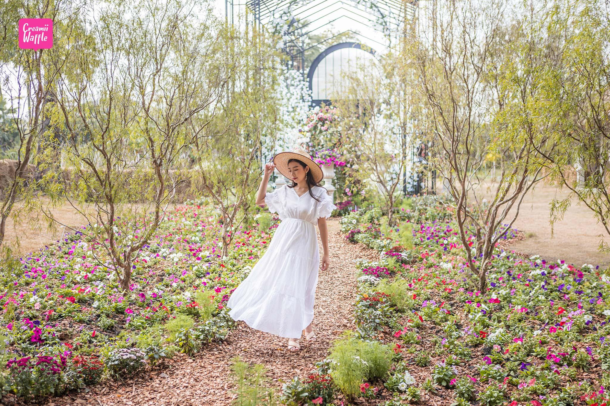 เที่ยว รักดอก RakDok มหัศจรรย์แดนมาลี